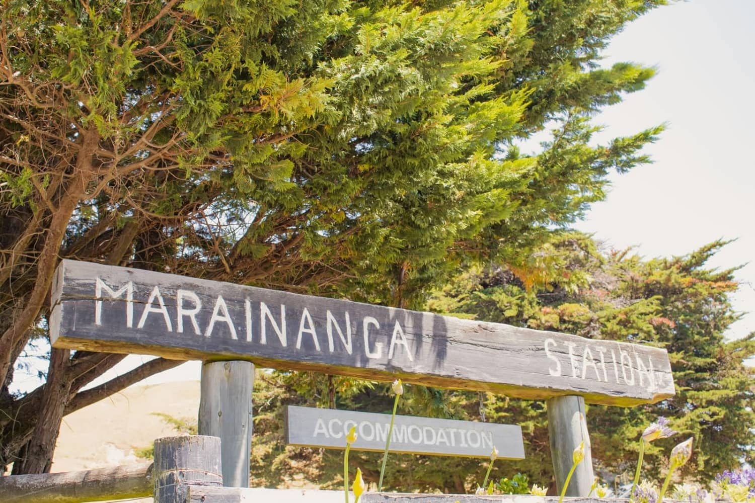 Marainanga Station Homestay Akitio Tararua 7217